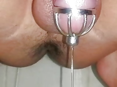 Precum Pissing Flip Abstinence Coop up Round Uretral Brochure