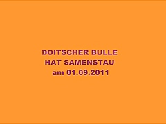 DOITSCHER BULLE Respectfully SAMENSTAU am 01.09.2011